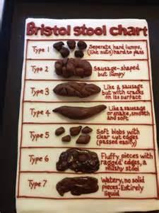 Bristol Stool Chart Cake