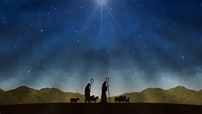 Shepherds Never Pastori