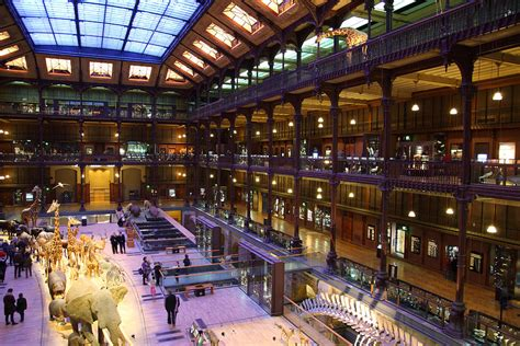 National Museum Of Natural History Paris France 011370