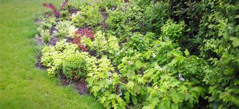 Gartenpflege Herbst by Gartenpflege Im Herbst Gartengestaltung Teichanlagen