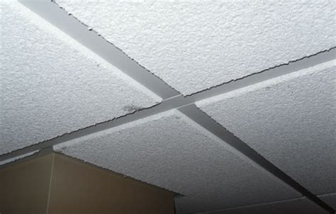 basement drop ceiling tiles certainteed celotex cashmere