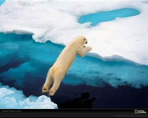 National Geographic Photos - National Geographic Wallpaper ...