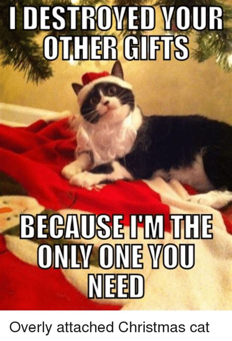 Im I The Only One Meme - i destroyed your other gifts because im the only one you need overly attached christmas cat
