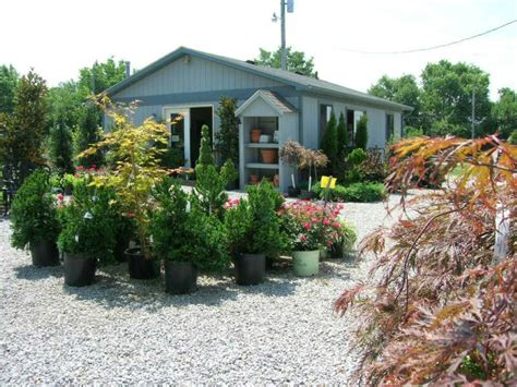 garden centers ky garden center glynn s landscaping nursery center