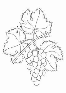 Disegno da colorare grappolo d'uva Cat 9876