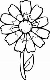 Coloring Flower Printables Flowers Printable Even Check sketch template
