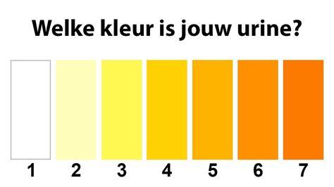 urien colors dit vertelt de kleur je urine jouw gezondheid