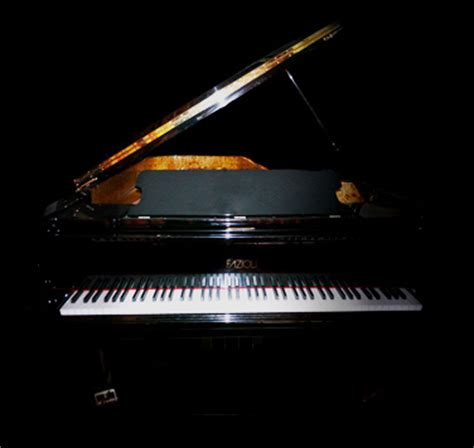 Imperfect Samples ®  Fazioli Ebony Concert Grand Piano