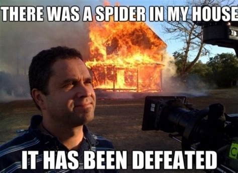 Killing Spiders Meme - kill it with fire