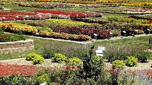 Flower garden tour in southern michigan for Southern flower gardens