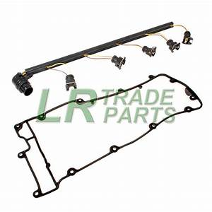 Land Rover Discovery 2 Td5 Injector Wiring Harness  U0026 Rocker Cover Gasket  2001