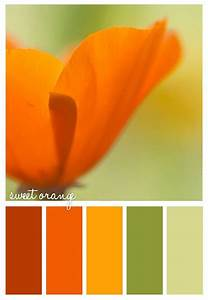 #orange #color #scheme #spring #fresh | colors | Pinterest