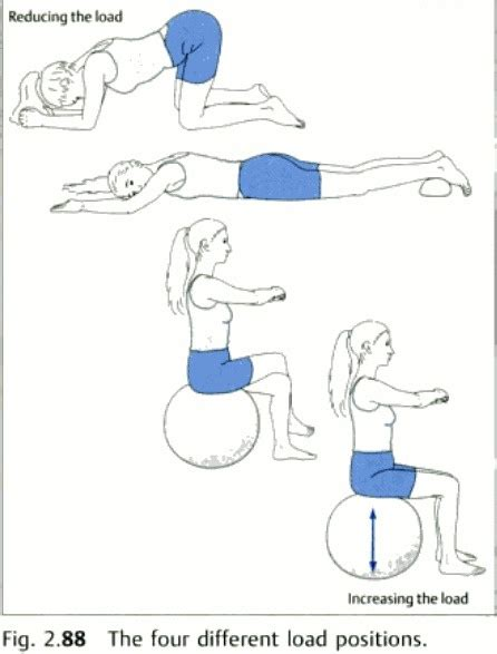 Pelvic Floor Relaxation Exercises by 17 Best Images About Pelvic Hips On Hip