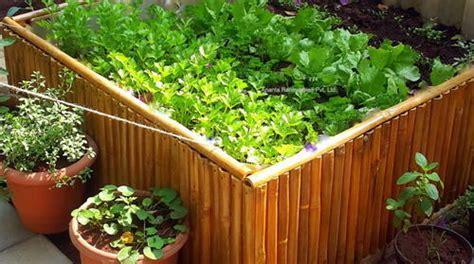 Organic Kitchen Gardening Services In Wakad, Pune, Ananta