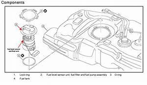 Nissan Versa 2013 Fuel Filter Location  Nissan  Free