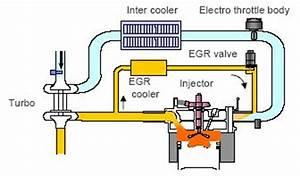Comment Tester Vanne Egr Electrique : comment tester vanne egr bmw ~ Maxctalentgroup.com Avis de Voitures