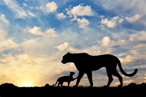 Silhouette Of A Cheetah And Cubs Stock Photo
