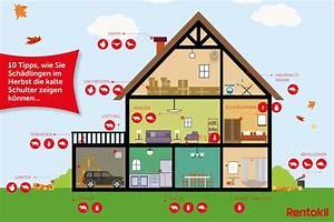 Schädlinge Im Haus : 10 tipps um herbst sch dlingen vorzubeugen rentokil ~ Lizthompson.info Haus und Dekorationen