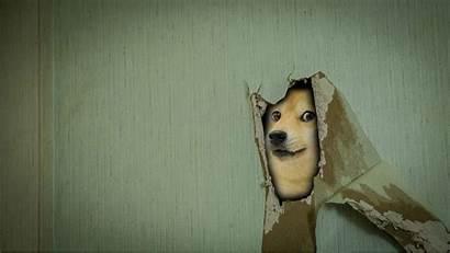 Memes Doge Wallpapers Backgrounds Desktop Mocah Category