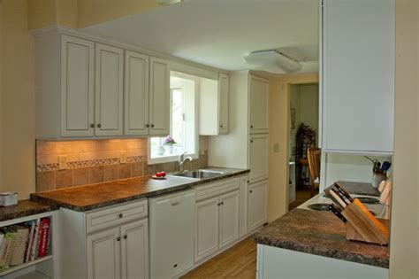 Economical Solution to Galley Kitchen Update   Traditional