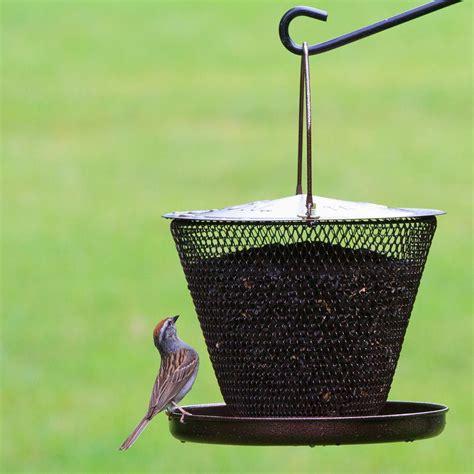 bird feeders for opus tray bird feeder bronze co uk garden