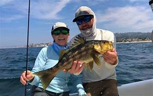 San Diego Kelp Inshore Fishing Conway Bowman Bluewater