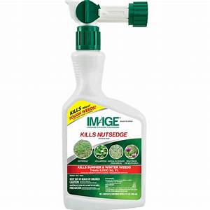 Image Kills Nutsedge Weed Killer