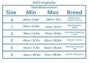Halti Headcollar - Size 4 Reduce Pulling East Road