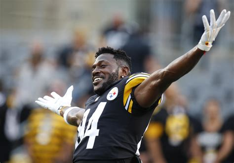 steelers  buccaneers  prediction betting odds