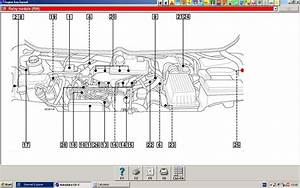 Peugeot 806 2lt Hdi Wiring Dia  Supply To Fuel Tank Pump