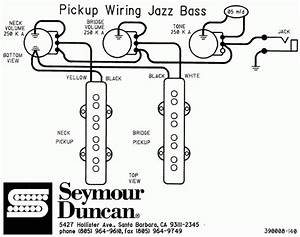 fender bass wiring diagrams wiring diagram and schematic With fender jazz bass pickup wiring diagram