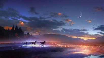 Night Horses Background Shine Laptop Tablet