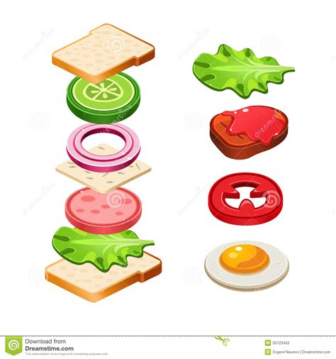 cuisine illustration sandwich ingredients food illustration royalty free