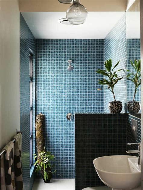 plante salle de bain sans lumiere 25 b 228 sta id 233 erna om mosaique salle de bain p 229 salle de bain bleu och carrelage mosaique