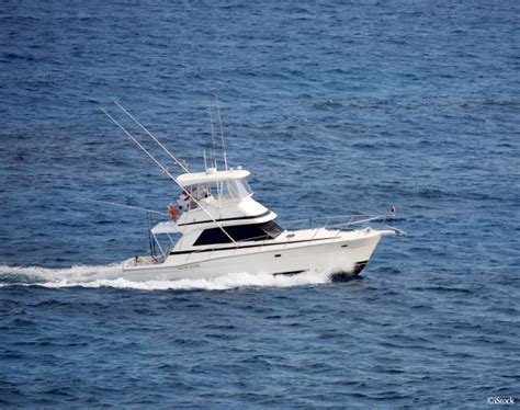 Charter Fishing Boat Outer Banks Nc by Everything You Need To Know About Outer Banks Fishing