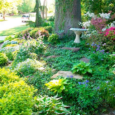 landscaping with trees ideas tree landscaping ideas myideasbedroom com