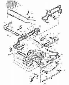 Vw T25 Waterboxer Engine Coolant Hoses  U0026 Hose Junctions