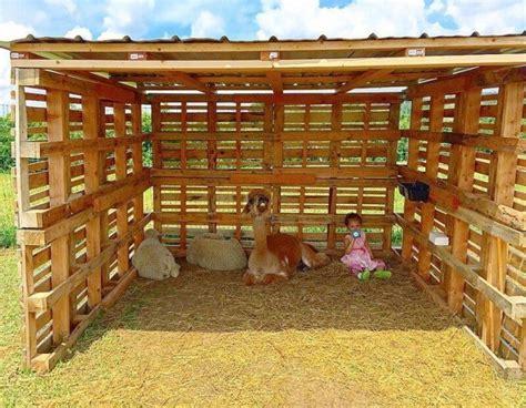 simple  cheap wood shed   pallets sensod