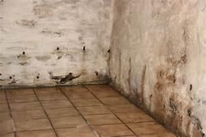 Probleme D Humidite Mur Interieur : isoler mur humide isolation comment isoler un mur humide ~ Melissatoandfro.com Idées de Décoration