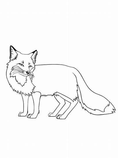 Fox Coloring Pages Preschoolers Preschool Characters A4