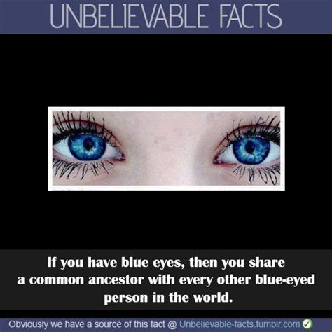eye color facts 25 best ideas about eye color facts on hazel