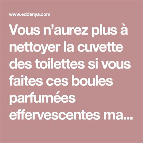 comment nettoyer la cuvette des toilettes 25 best ideas about cuvette de toilette on