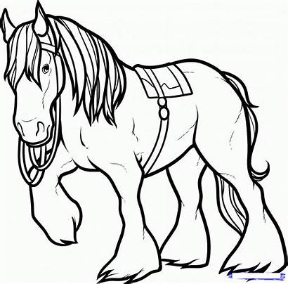 Horse Coloring Pages Drawing Clydesdale Draw Printable