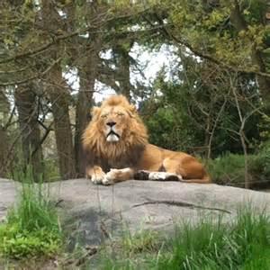 Woodland Park Zoo Seattle