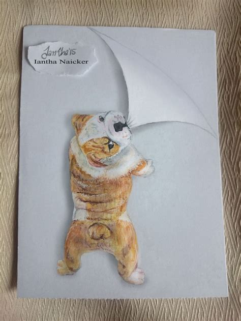 animal drawings   leap   page doodle books