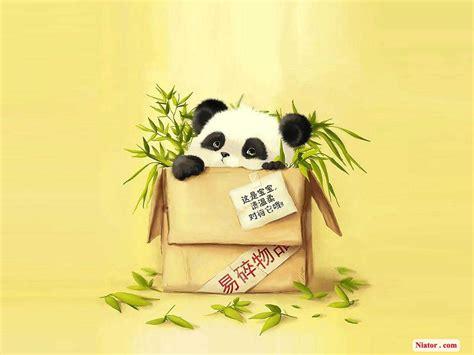 keren  gambar wallpaper panda richa wallpaper
