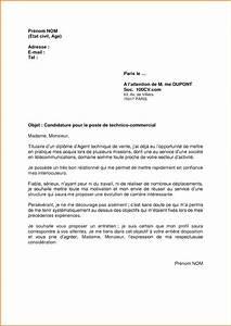 Exemple Lettre De Motivation Bts : lettre de motivation bts technico commercial ~ Medecine-chirurgie-esthetiques.com Avis de Voitures