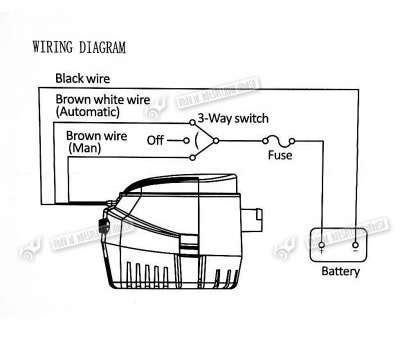 Manual Bilge Wiring Diagram by 10 Top Wiring Bilge Toggle Switch Collections Tone