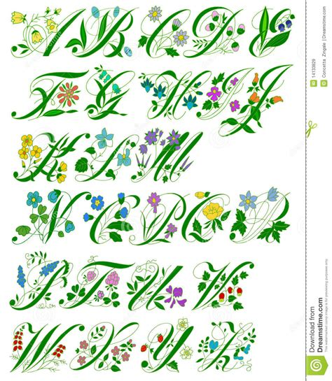 flower alphabet royalty  stock images image