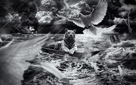tiger im boot hintergrundbilder tiger im boot frei fotos